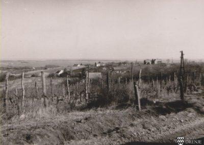 borovik_stare_slike_1967 (3)