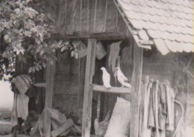 kucanci_djakovacki_stare_slike_1974_5