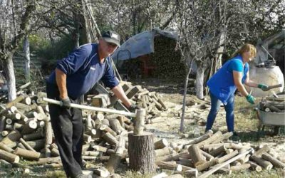[Zaželi] Pripreme za zimu – čišćenje kuće i okućnice, cijepanje drva, sadnja stabala