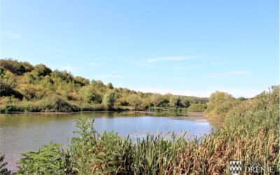 Od sada lakši pristup jezeru Kosinac